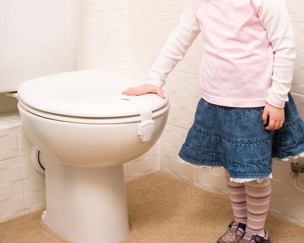 Clippasafe Toilet Seat Lock 1