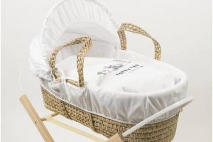 Tatty Ted Moses Basket White