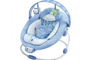 chicco hoopla bouncer instructions