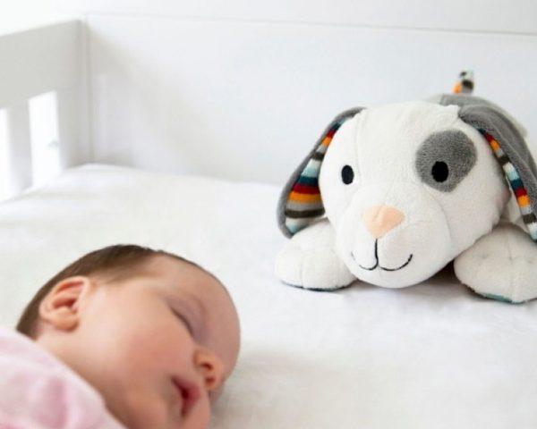 ZAZU Dex the Dog Soft Toy Comforter