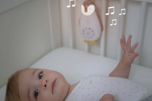 ZAZU Zoe the Penguin Music Box 1